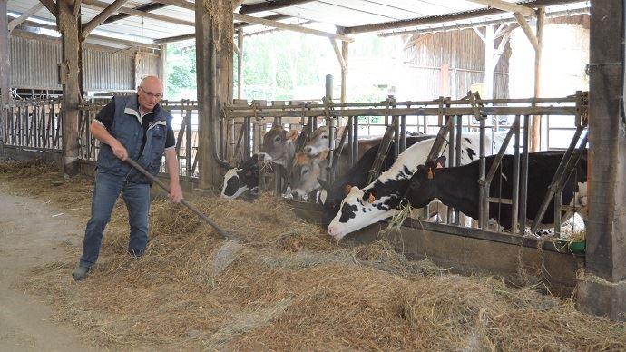 «On loue la ferme, les terres, pourquoi pas les vaches?» Ainsi, Hubert Morin (35) loue 30 vaches prim'holsteins à la société Gestel. (©TNC)