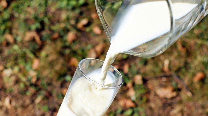 La crise sanitaire a nettement amélioré le solde commercial français en produits laitiers au 1er semestre 2020. (©Pixabay)