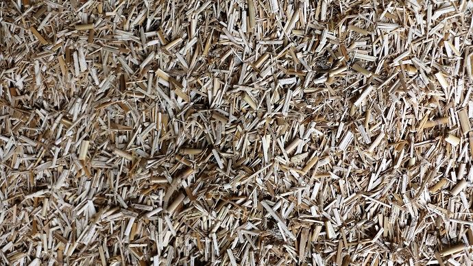 Le miscanthus en litière promet un gain de temps puisqu'on réduit la fréquence de curage. (©TNC)