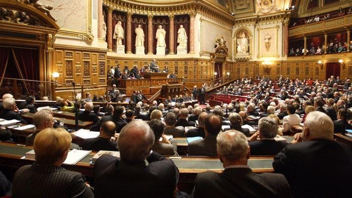 Le Sénat a adopté le projet de loi réintroduisant à titre dérogatoire l'usage des néonicotinoïdes sur les betteraves pour faire face aux pucerons et à la jaunisse. (©Sénat)