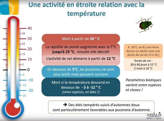 (©Arvalis-Institut du végétal)