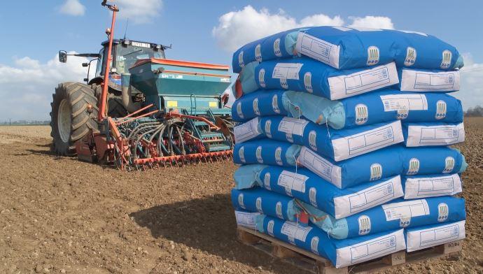 «Les responsables des usines de production de semences de lin sont optimistes pour la prochaine campagne», précise le Gnis. (©Gnis)