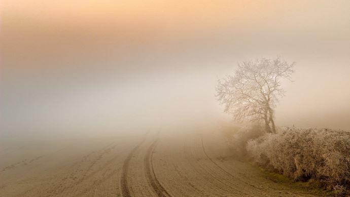 Brume ou brouillard, quelle est la différence? (©Pixabay)