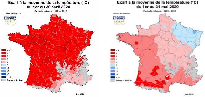 Cette année, les températures élevées au printemps ont assuré de bonnes conditions de démarrage aux maïs, notamment pour les semis précoces. (©Arvalis-Institut du végétal)