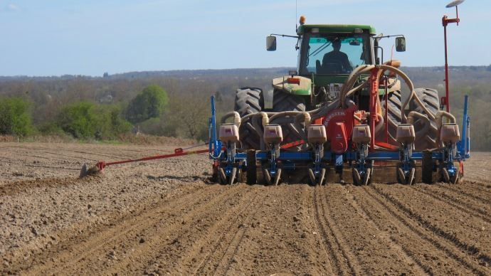 Découvrez les variétés de maïs Euralis Semences mises en avant pour les semis 2021. (©TNC)