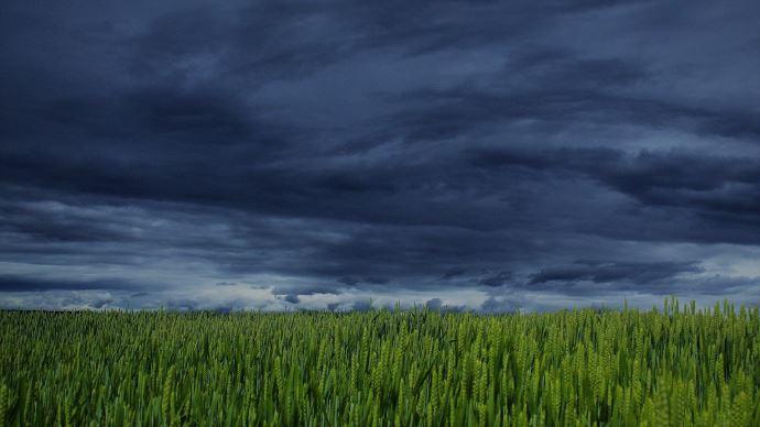 Le climat a été cité comme responsable de difficultés économiques importantes pour 66% des agriculteurs. (©Pixabay)