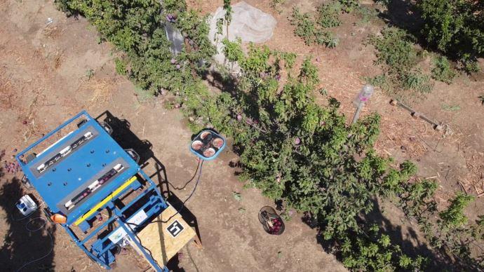 Kubota investit 20 millions d'euros dans l'entreprise israélienne Tevel Aerobotics Technologies qui propose des drones autonomes pour cueillir les fruits. (©Kubota)