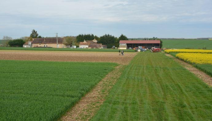 Située à Villedieu-sur-Indre (Indre), la plateforme Syppre du Berry s'étend sur neuf hectares. (©Syppre)