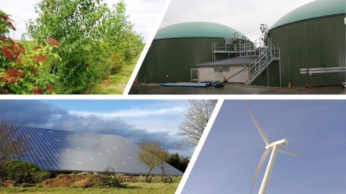Vent, soleil ou biomasse: les sources et les systèmes de valorisation d'énergie sont multiples sur une exploitation. (©TNC)