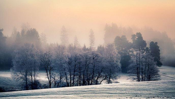 Les températures pourraient fortement baisser d'ici à la fin du mois de janvier. (©Pixabay)