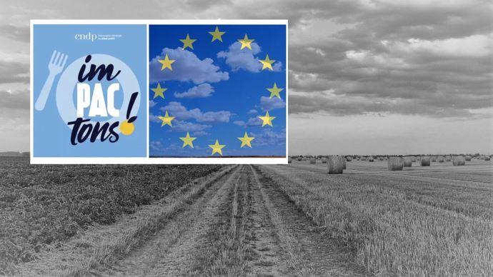 Le rapport final du débat Impactons a été remis le 8 janvier. (©TNC)