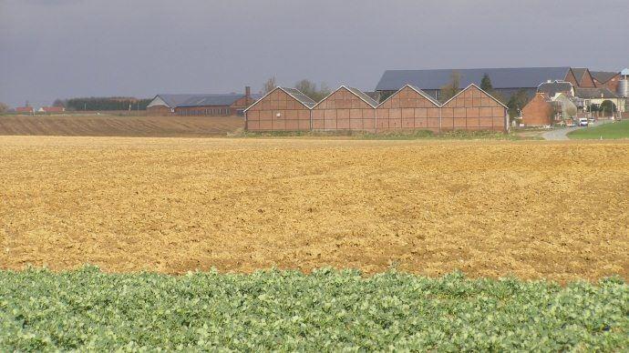 «Mieux vautêtre patient et ne pas se précipiter pour trouver la ferme qui vous va bien, même si vous êtes pressé que votre projet se concrétise», insiste Rémi Castel, conseiller transmission à la chambre d'agriculture du Morbihan.(©TNC)