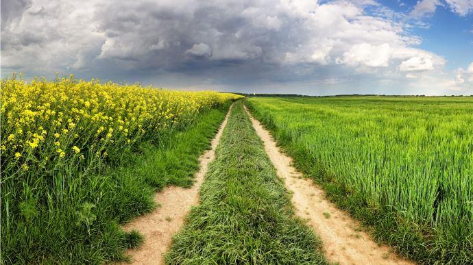 Quels sont les défis de l'agriculture française? (©Pixabay)