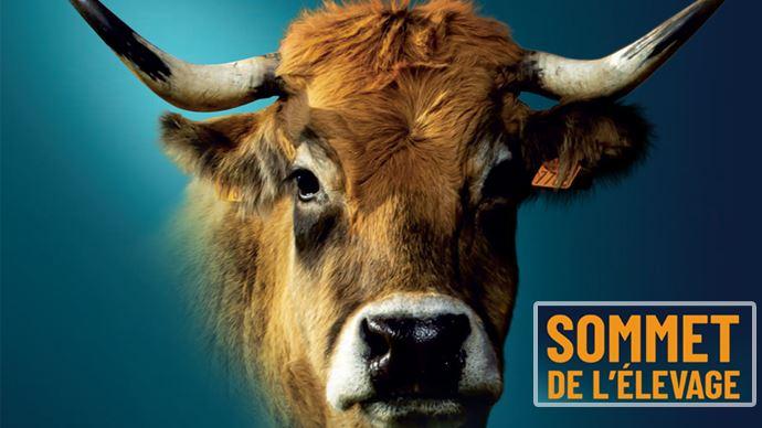 La trentième édition du Sommet de l'élevage devrait se tenir du 5 au 8 octobre 2021. (©Sommet de l'élevage / TNC)