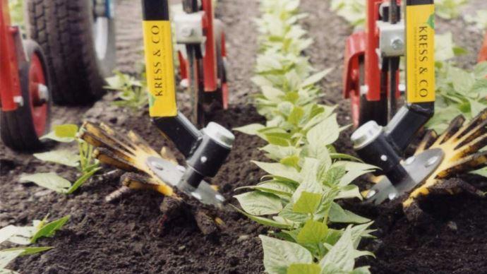 Les doigts Kress permettent de désherber entre les plantes sur le rang et de limiter le recours au désherbant chimique. (©Kress)