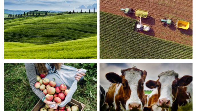 Les perspectives à court terme sont favorables pour les marchés agricoles européens, indique un rapport trimestriel de la Commission européenne. (©Commission européenne)
