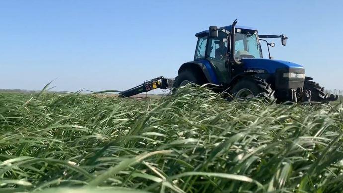 L'atteinte des 35% de MS à l'ensilage d'herbe passe par une hauteur de fauche correcte (7 cm). (©TNC)