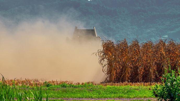 Au Brésil, la production de maïs, qui arrive souvent en deuxième culture après le soja, risque d'être impactée par un mois d'avril sans précipitations. (©Pixabay)