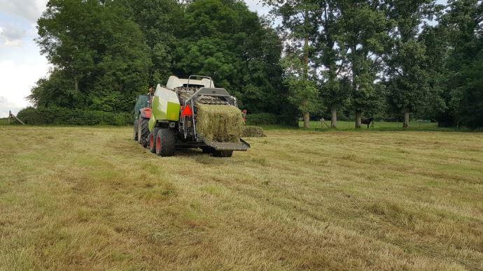 Débrayer des prairies pour les récolter en foin, ensilage ou enrubannage, assure un certain stock tout en préparant la repousse suivante. (©TNC)