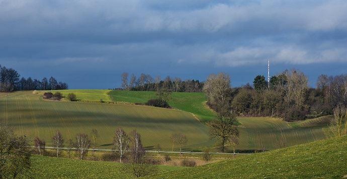 Julien Denormandie compte proposer une aide de 70 euros par hectare et par an aux producteurs bio, selon la Fnab.(©Pixabay)