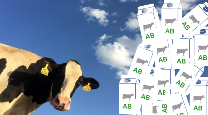 La consommation de produits laitiers biologiques progresse moins vite que la production. (©TNC/Infogram)