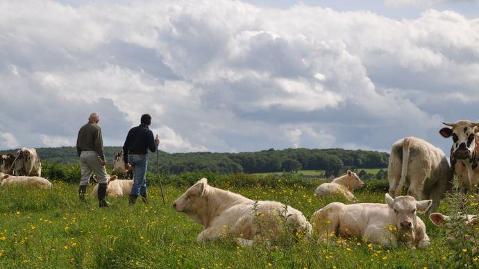 63% des consommateurs se disent prêts à payer davantage pour le bien-être animal (©TNC)