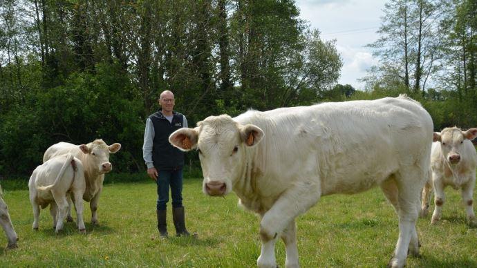 Antoine Charrier: «Romania, c'est la meilleure femelle de mon troupeau, je l'ai obtenue grâce au génotypage de la mère, qui m'a permis, en connaissant ses caractères génétiques, de choisir le meilleur taureau»