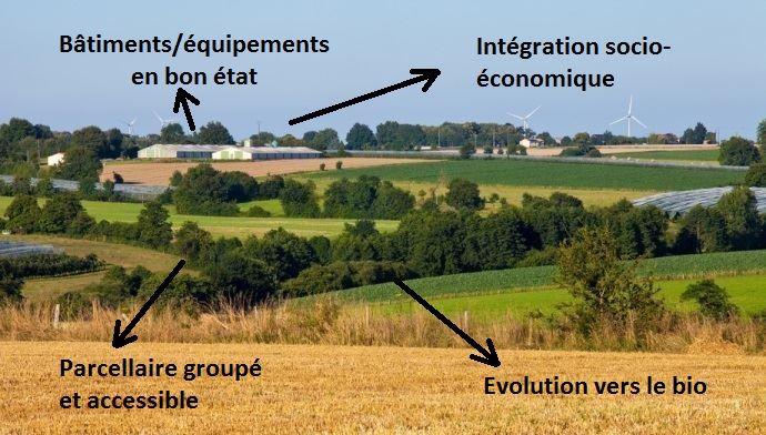 Pour améliorer la transmissibilité de leur ferme, les cédants doivent se demander qui sont et ce que cherchent les repreneurs. (©TNC)