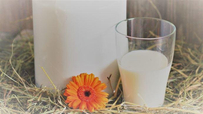Leclerc a annoncé le 9 juin avoir signé un contrat pour une meilleure rémunération de 200 millions de litres de lait. (©Pixabay)