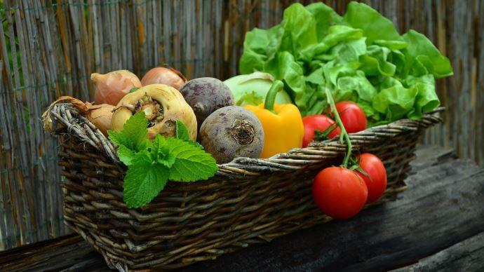 Face à la grogne des producteurs bio, le ministère rappelle son engagement en faveur de l'agriculture biologique. (©Pixabay)