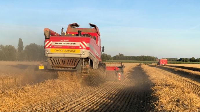 La séparation du grain du flux de paille est l'opération qui limite le plus le débit de chantier des moissonneuses batteuses. (©ETA Nicolas)