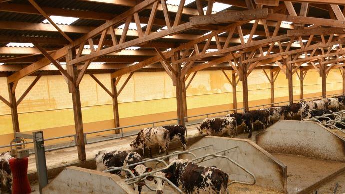 Le logiciel propose également un catalogue de produits brise-vent pour aider l'éleveur à choisir les matériaux appropriés (©Terre-net Media)