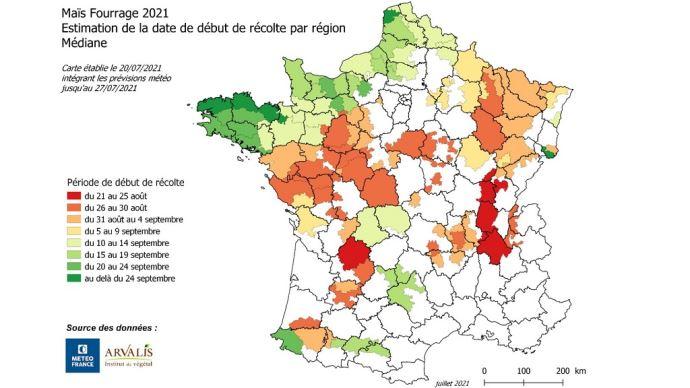 Les premiers ensilages sont attendus à partir du 20 août en Rhône-Alpes et au nord de l'Aquitaine puis au Centre et Centre-Ouest, Champagne et Lorraine... (©Arvalis Institut du végétal)