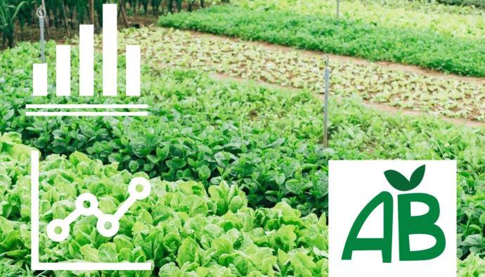 L'agriculture biologique a poursuivi sa progression en 2020. (©TNC)