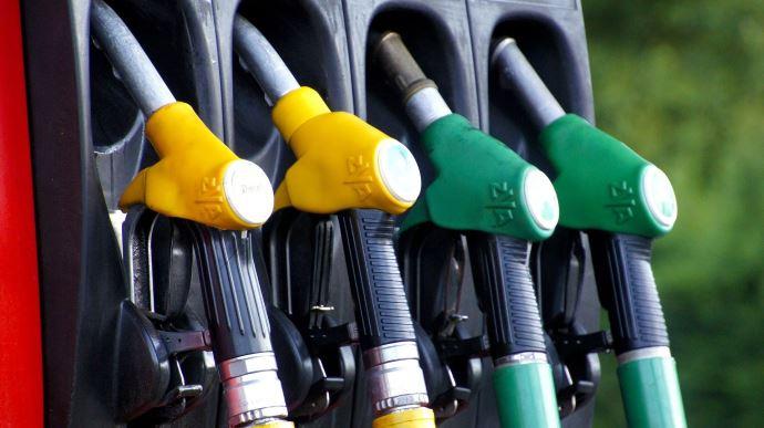 Depuis début 2020, Total n'intègre plus d'huile de palme dans ses biocarburants destinés au marché français. (©Pixabay)