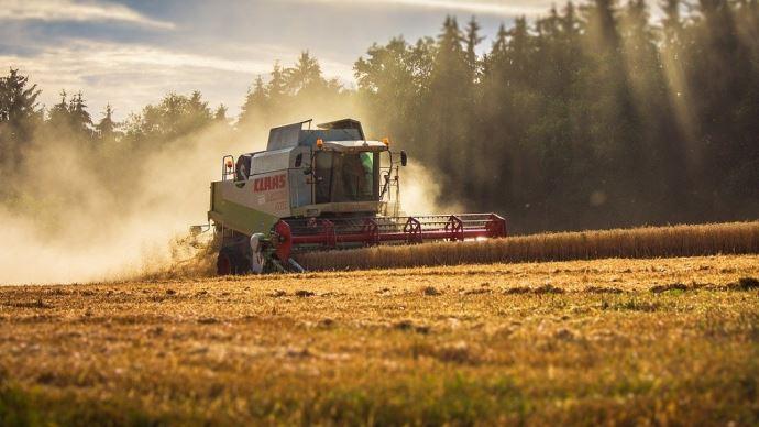 La qualité du blé 2021 devrait être satisfaisante au regard des premières estimations de récolte. (©CC)