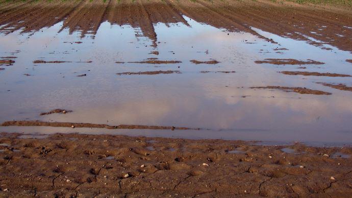 La France a reçu 73 mm de pluie en moyenne nationale, largement plus que les 50 mm de normale. (©Pixabay)