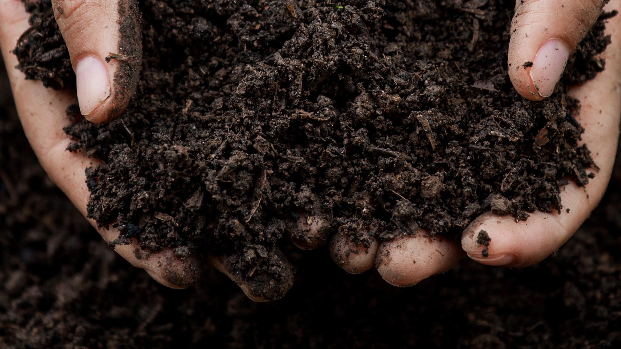Le programme de rémunération de Soil Capital permet à l'agriculteur de gagner minimum 27,5€ par tonne de carbone stockée ou évitée. (©Soil Capital)