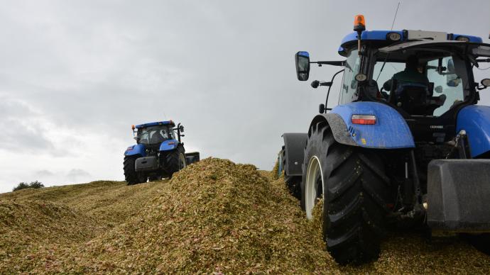 Mieux vaut prévoir deux tracteurs pour le tassement du silo afin de pouvoir suivre le débit de chantier de l'ensileuse. (©TNC)