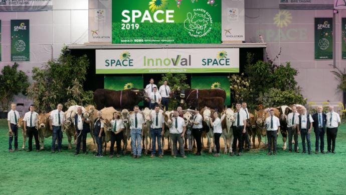 Condensés sur trois jours au lieu de quatre, les concours bovins du Space restent l'évènement incontournable! (©Space)