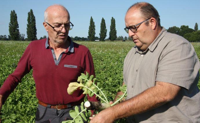 «Le plus fort d'un groupe est moins fort que tout le groupe», tel pourrait être le slogan du réseau Déphy Limagne 63 selon Frédéric Moigny (à droite), responsable d'équipe agronomie à la chambre d'agriculture du Puy-de-Dôme et Rémy Rivaton, agriculteur à Gerzat (à gauche). (©Emilie Durand)